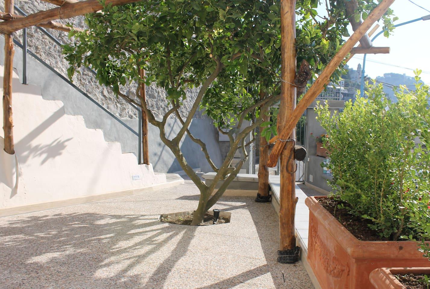 cortile esterno Domus Caterina Appartamento Casa Dei Limoni