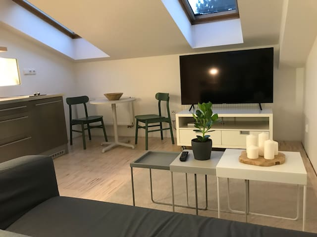 Large TV, sofa and kitchen table