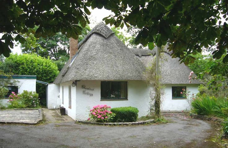 Chestnut Cottage, in a New Forest village setting - Burley