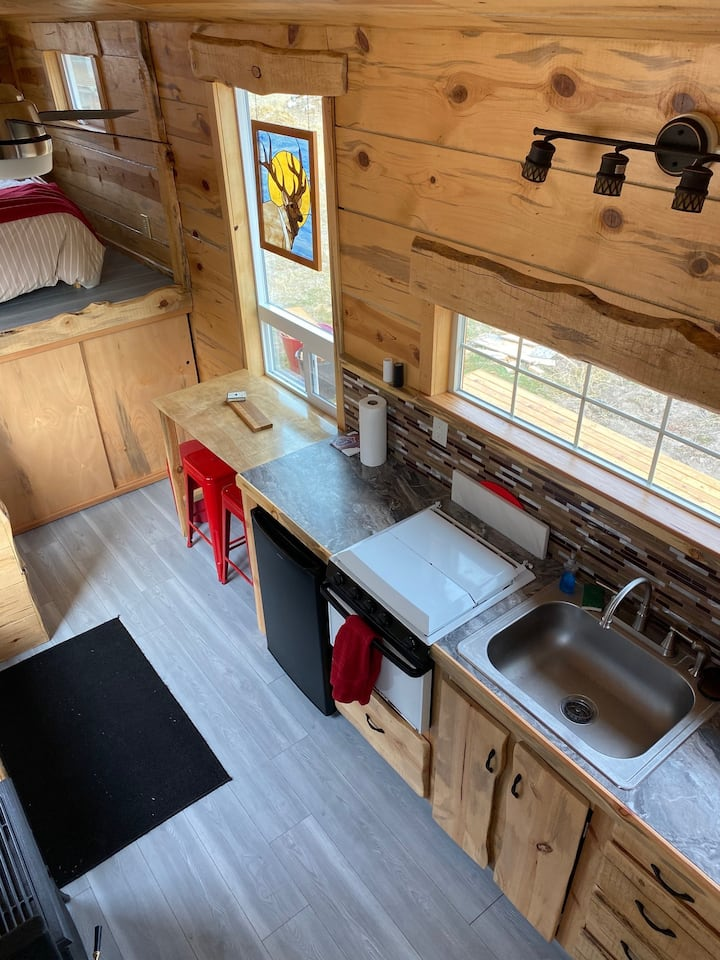 Tiny Pine House