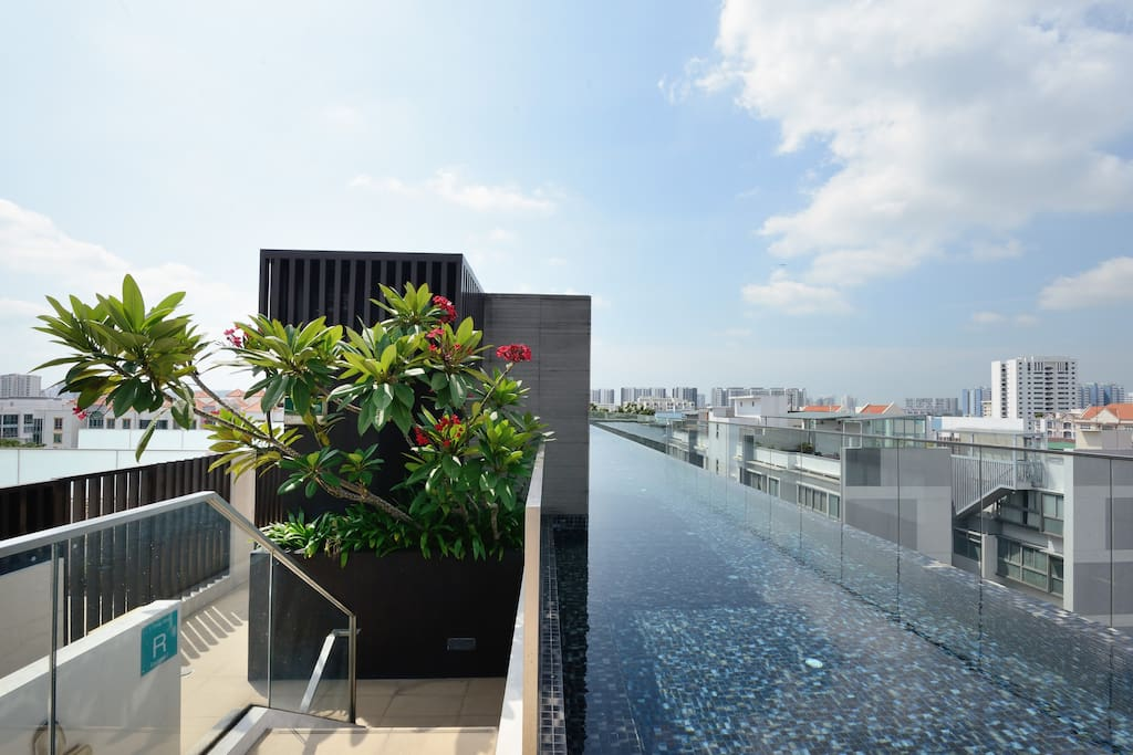 50 metres infinity pool with jacuzzi and great view! Pool towels provided :)