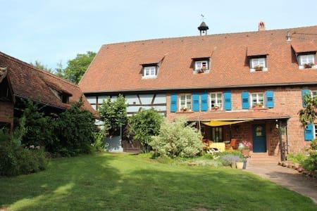 La Ferme du Heubuhl chambres d'hôtes Obersteinbach - Guesthouse