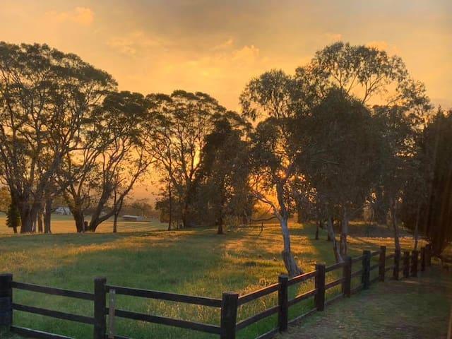 Highland Farm - Highland Views