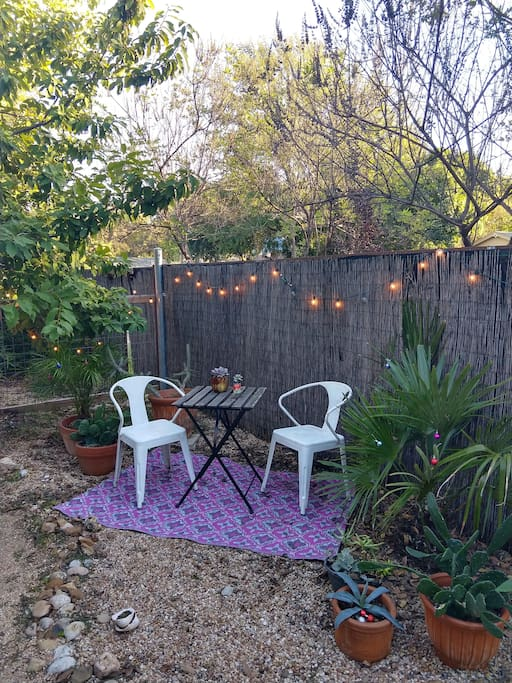 Adorable yard that's fenced in, green year-round, and all yours!