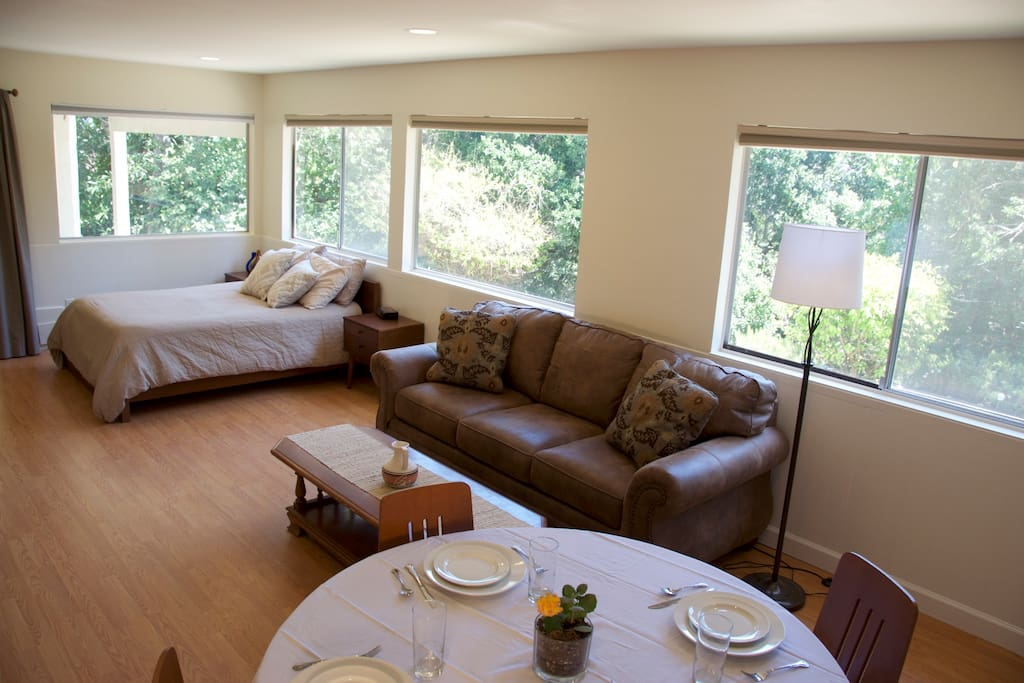 Large private room includes dining table, couch seating, desk, bed, and kitchenette.