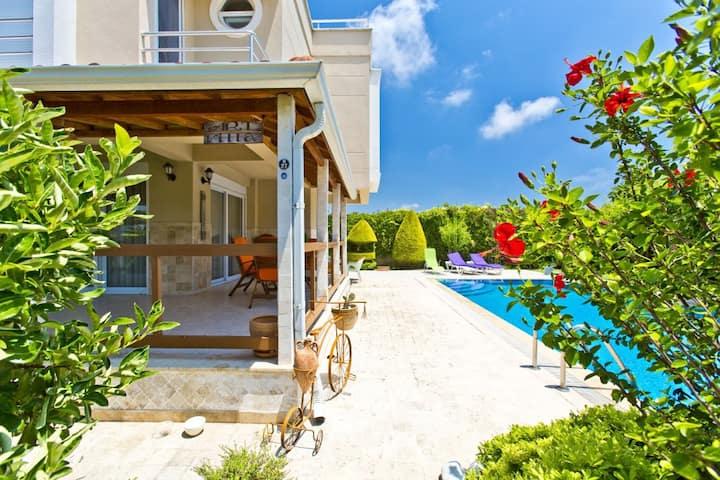 Paradise Town Villa ART