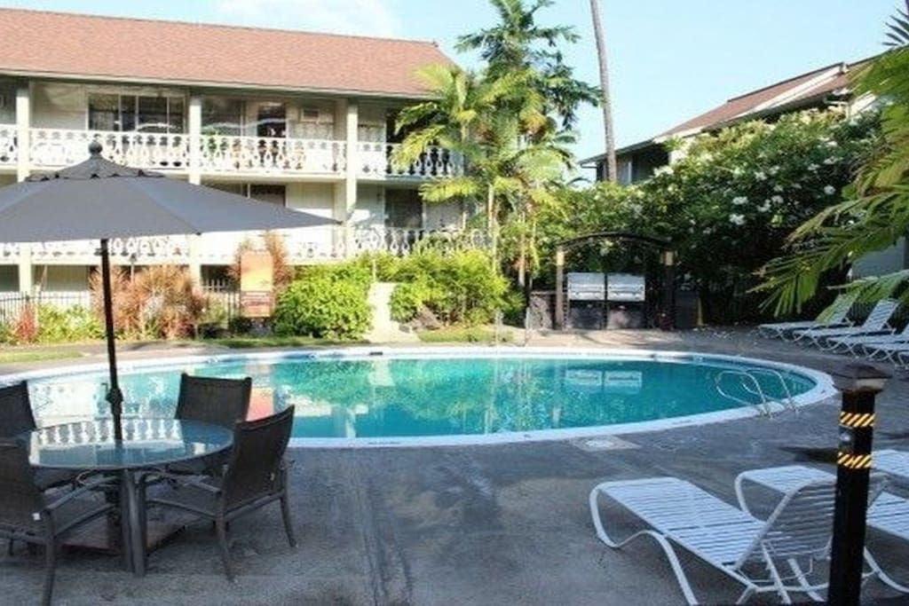 Pool for lounging and playing. Two large BBQs. Large spa that is covered with a oversize, nice canopy next to pool