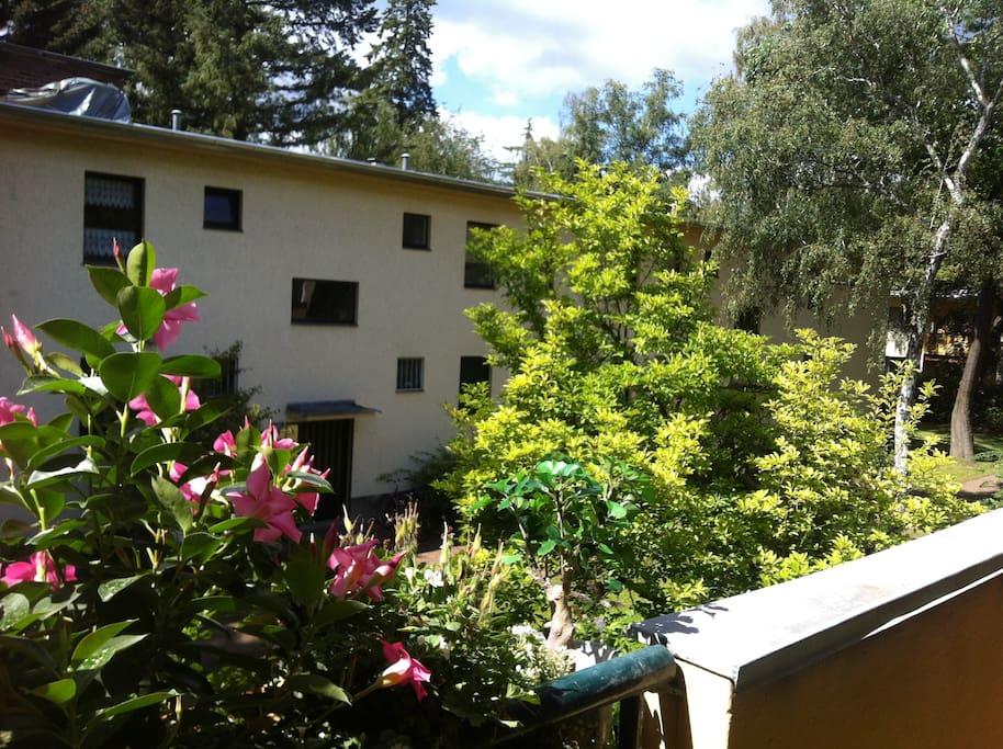 Wohnanlage fußläufig zum Grunewaldsee und total ruhig gelegen