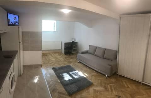 Old Town Center Studio Apartment