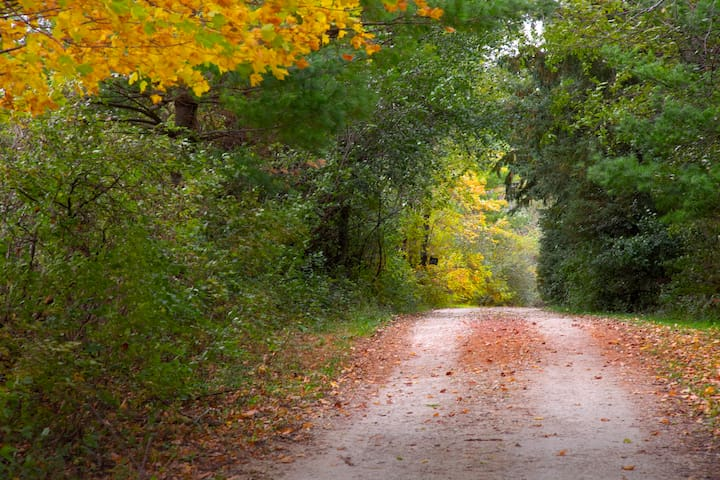 The road about half mile from Stone Ridge Farm, please drive slowly as you enter the property.