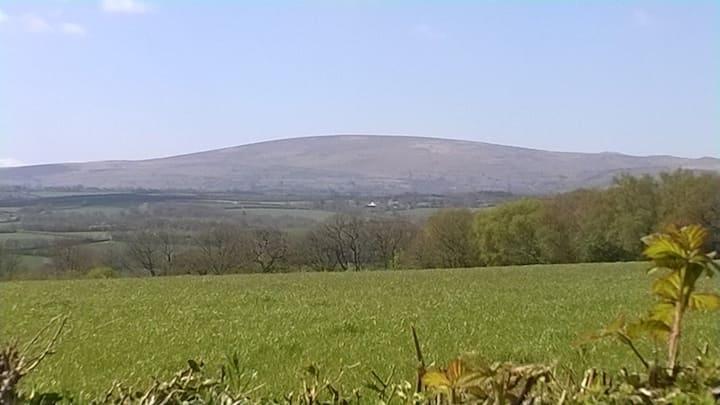 Swallows at Falkedon, Romantic,  Dartmoor, 4* Gold