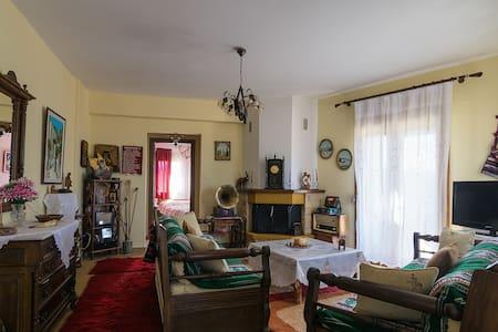 ''Διόνυσος'' Διαμέρισμα με θέα !!!! - Karpenisi