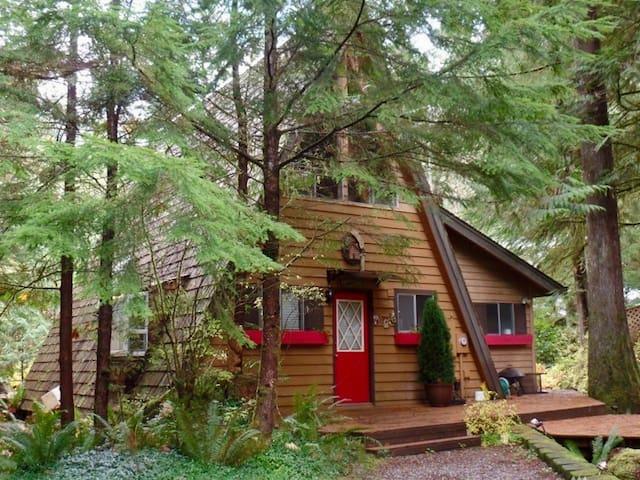 Happy Hour Hideaway - Deming - Cabin