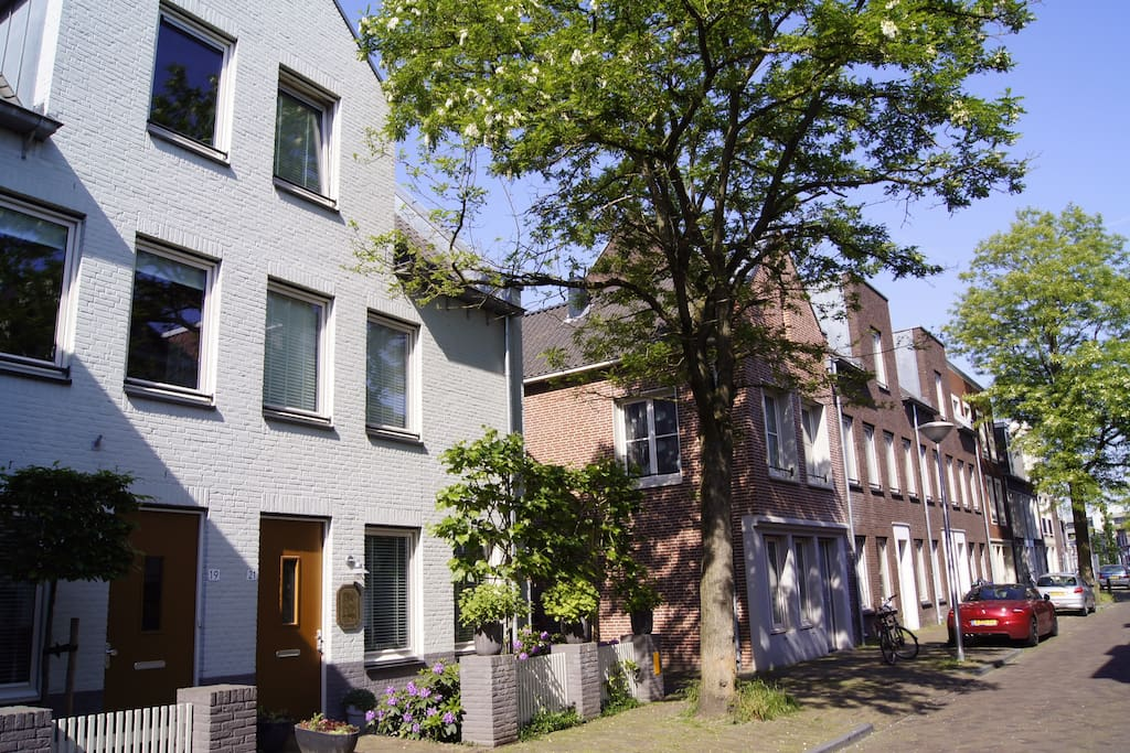 Hoogstraat with Bed and Breakfast