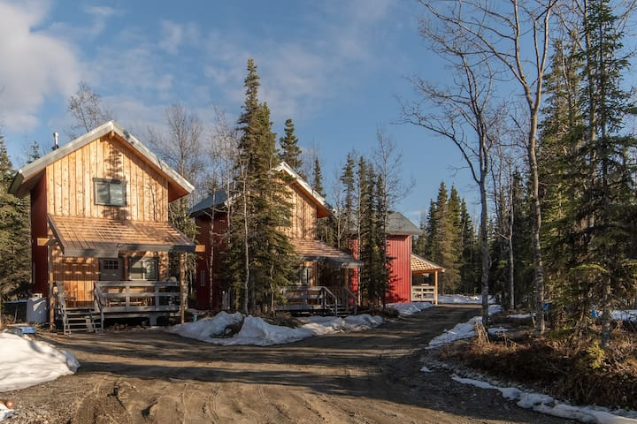 """Cohoe Cabins """"The Moose Hut"""""""