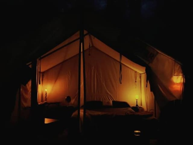 Tentrr Signature - The Magic Glamp  ... Make some magical memories. Your wish is our command
