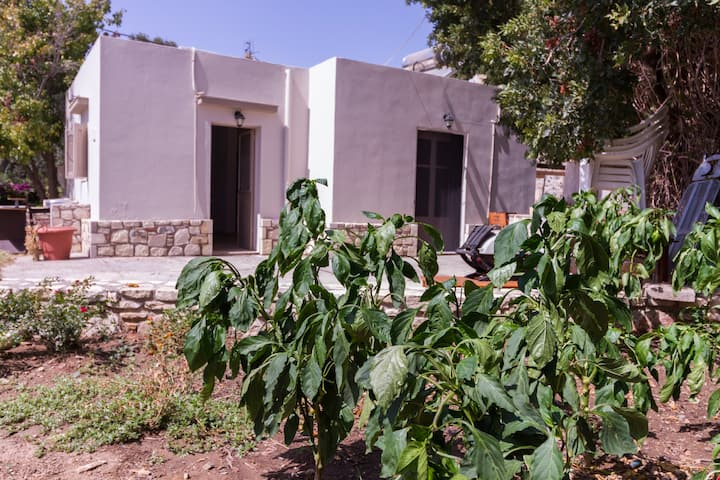 Ampavris Little House
