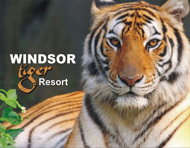 Windsor Tiger Resort - Kisli