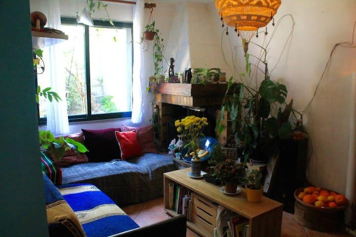 Grande maison agréable, tranquille et lumineuse - Aubervilliers - Casa