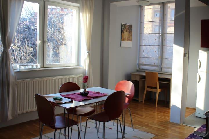 Cozy Apartment in the center of Prishtina