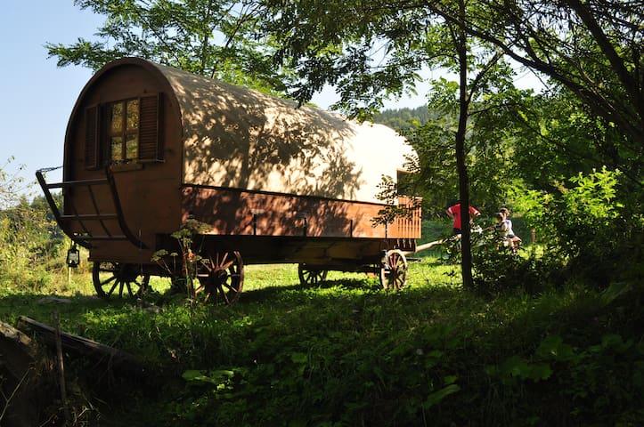 Horse Drawn Szekler Caravan in Land of Volcanoes - Lăzărești