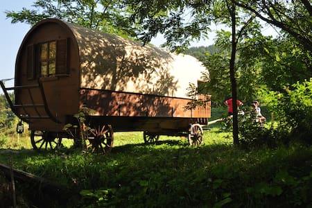 Horse Drawn Szekler Caravan in Land of Volcanoes - Lăzărești - Asuntoauto