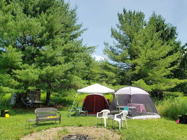 "Wildwood Farm's~  ""Whispering Pines"" Camping"
