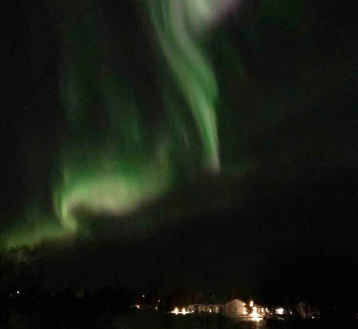 Northern Lights from the back yard