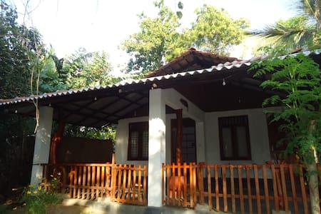 standard room - Tissamaharama - Bed & Breakfast
