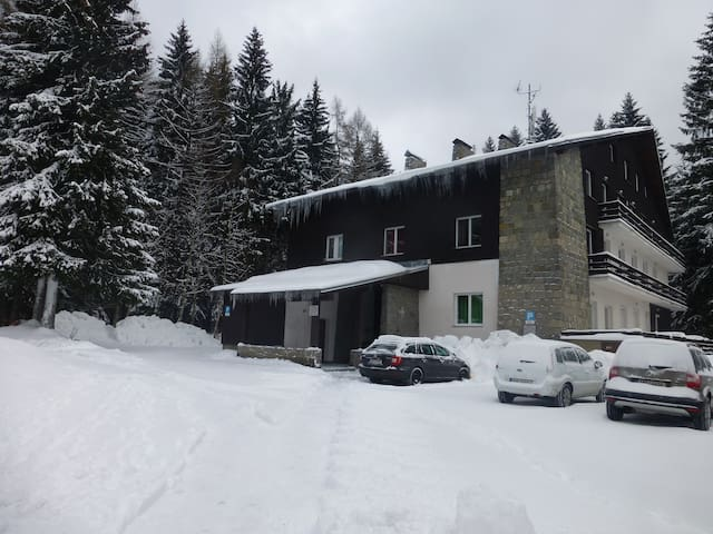Apartment Ludmila II.Harrachov - Harrachov