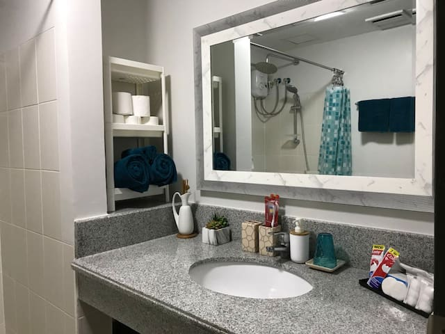 Our Bathroom has free basic toiletries for our guest (Soap, shampoo, tooth paste, tooth brush, tissues & towels)