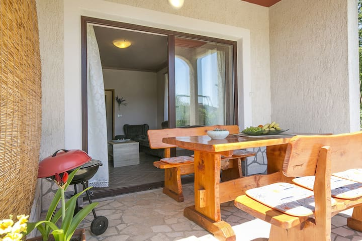 Lovely Apartment Suzy with big garden near Labin - Labin - Apartamento