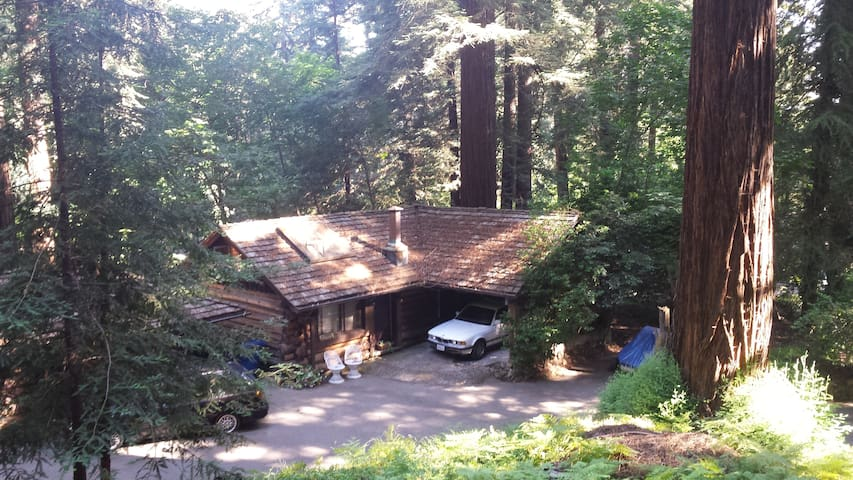 Charming Cottage in the Redwoods