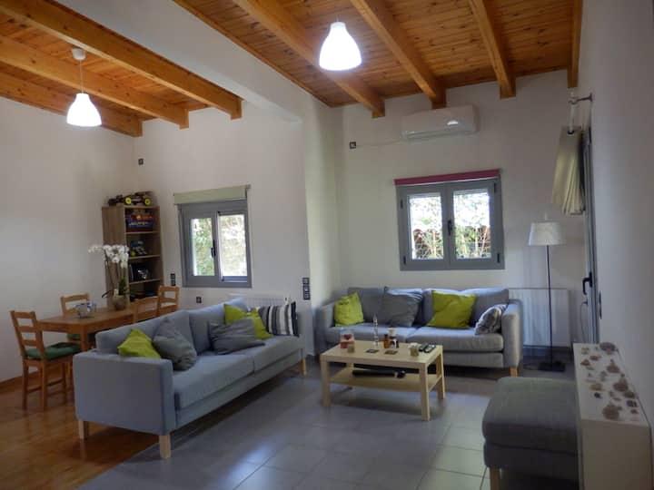 Luxurious comfortable single house in Marousi.