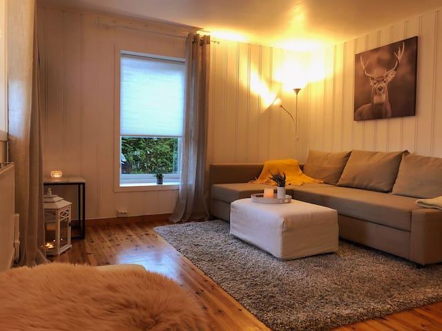 Solrik og koselig  33 kvm leilighet i vakre Drøbak