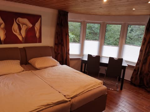 1 Zimmer Wohnung im Grünen 2.0