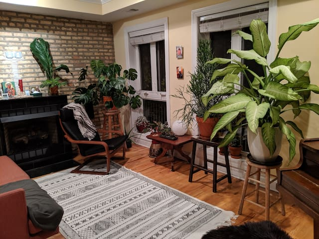 Plant lover's paradise in Rogers Park
