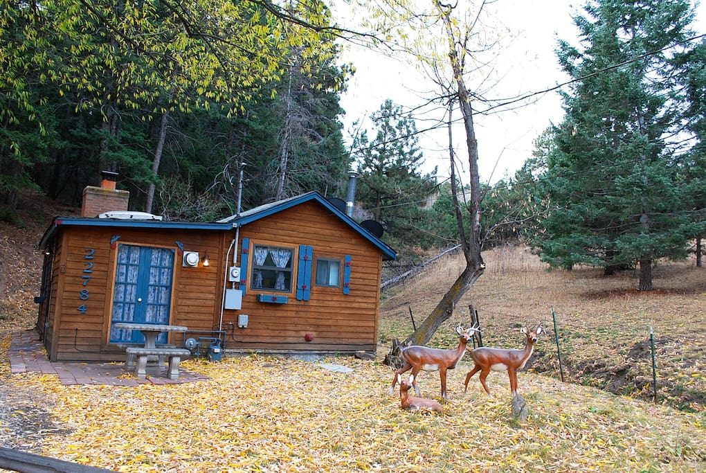 Cozy tiny cottage in foothills of golden cabins for rent for Loveland co cabin rentals