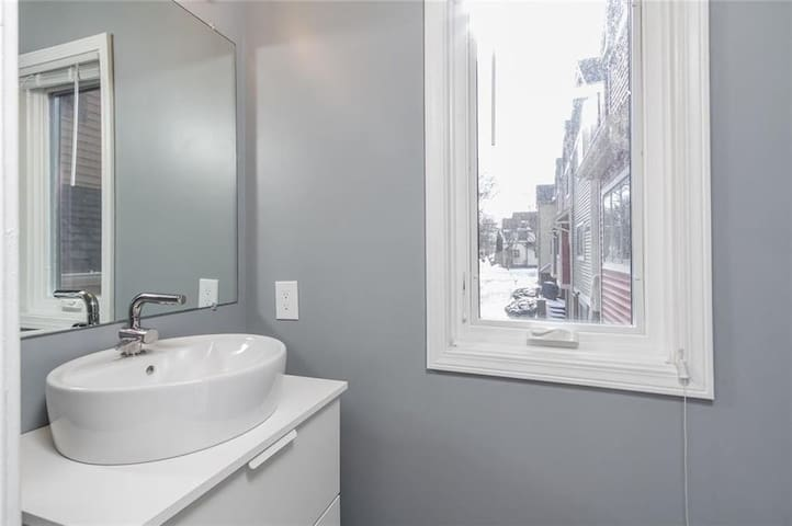 Renovated Downtown Rochester Corn Hill Townhouse