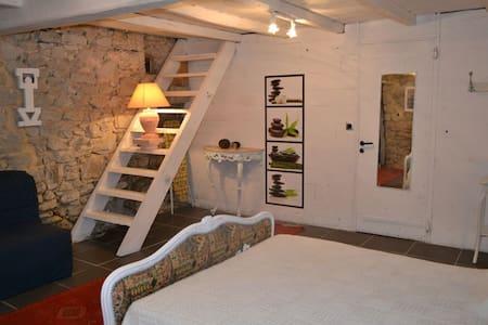 maison de charme, végétation luxurante - Sainte-Marie-de-Gosse - Dům
