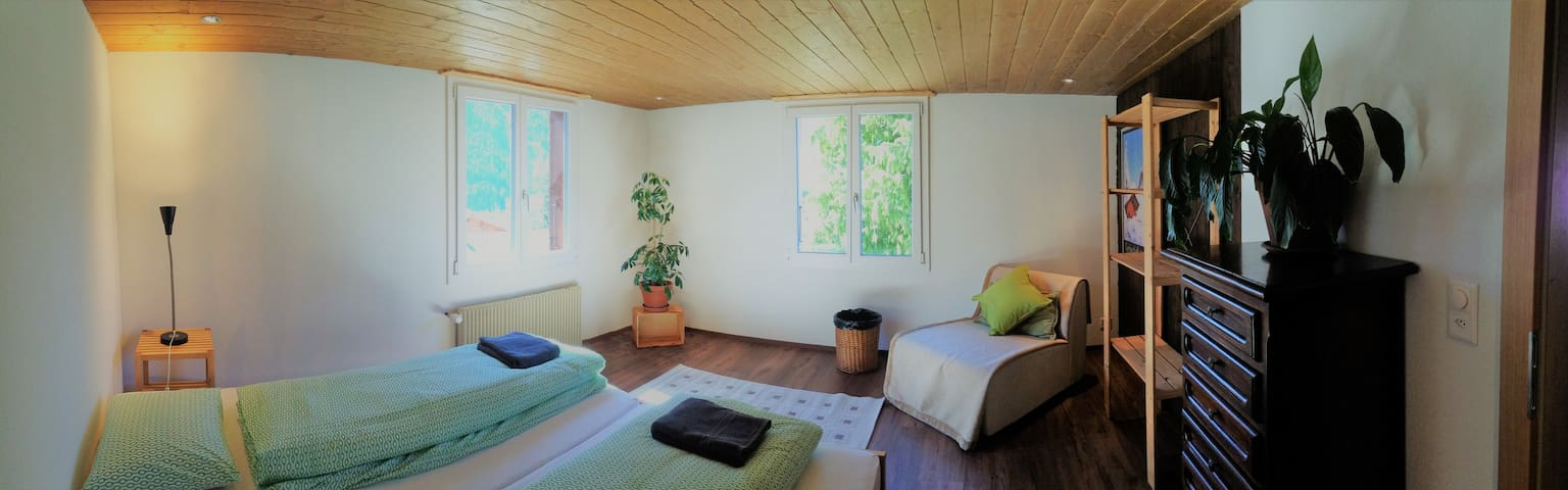 Spacious apartment in downtown Grindelwald - Grindelwald
