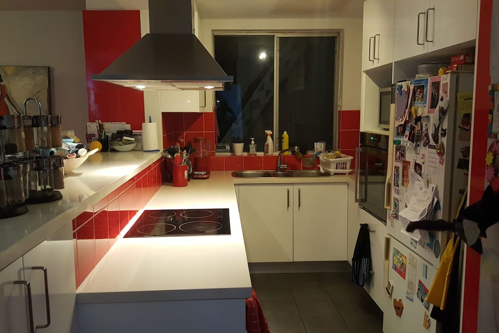 Modern kitchen with full oven, dishwasher, induction cooktop and waste disposal system.