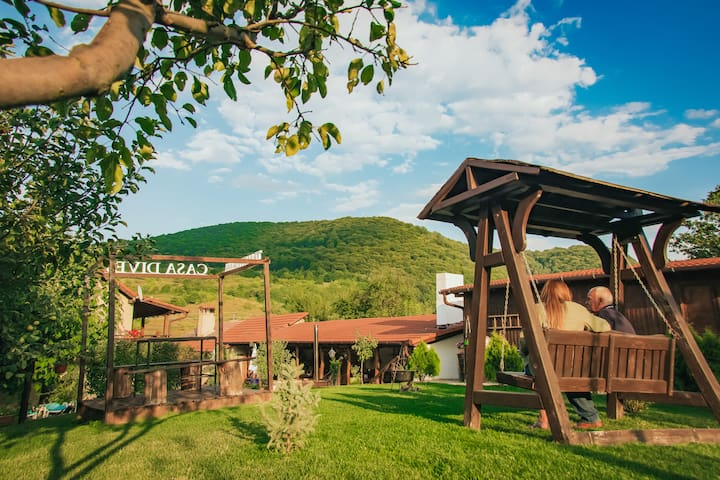 Transylvania village food, agrotourism with a view