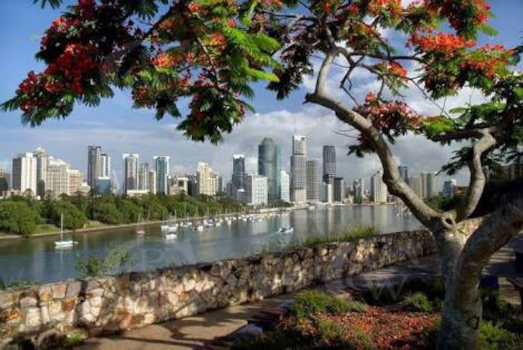 Gorgeous Brisbane riverside