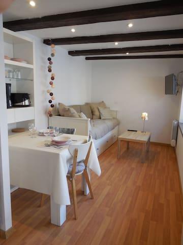 Studio centre Alsace entre Strasbourg et Colmar - Epfig - Apartamento