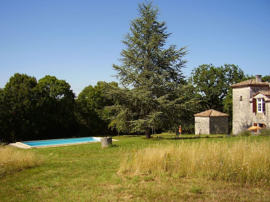 Vaste jardin avec piscine