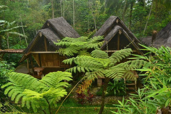 Rimbono Home Stay-Villa - Kulon Progo Regency - House