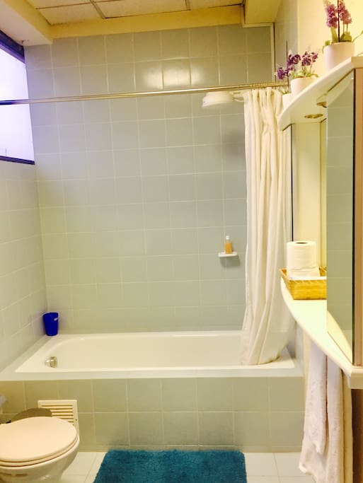 Suite, Private Bathroom Tub & Shower Stall