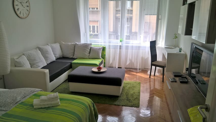 SPECIAL OFFER CROATIA - ZAGREB,  Center Apartment