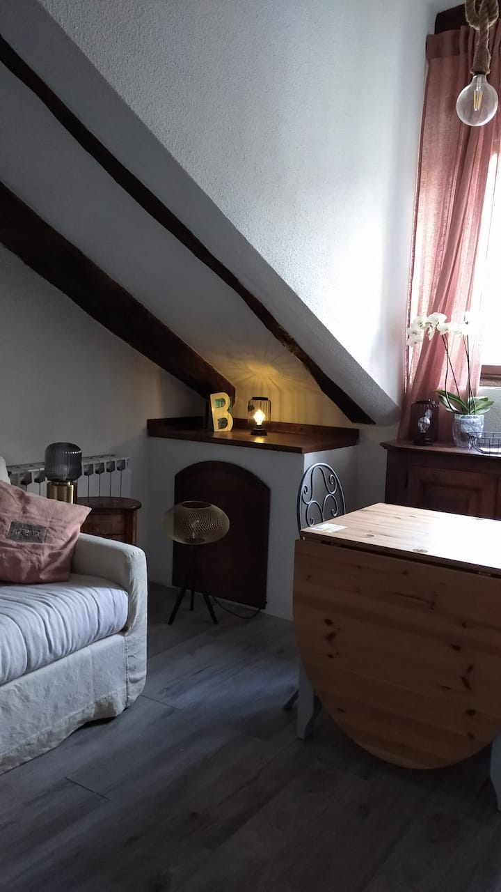 Stylish and cozy mini apartment in Turin centre